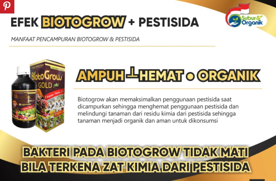manfaat biotogrow gold