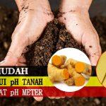 Cara Mengetahui pH Tanah Dengan Metode Sederhana Tanpa Alat [pH METER]